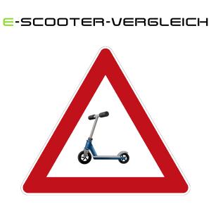 Elektro Scooter Strassen Zulassung